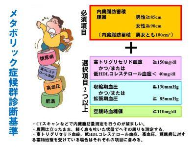 (解説)メタボ健診、腹囲に関係なく保健指導の対象に?(healthy-life21.com)