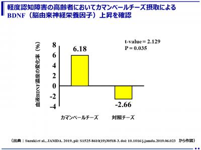 カマンベールチーズ摂取による認知症予防の可能性を示唆(桜美林大学、東京都健康長寿医療センター他)